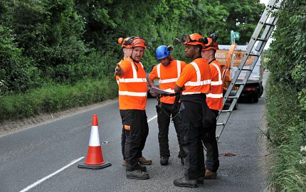 Tree surgeons in road