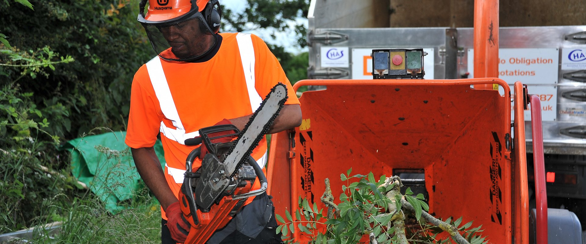 Tree surgeon Southampton