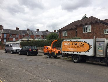 Trimmed Hedge, Shirley, Southampton